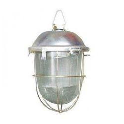 Светильник TDM НСП 02-200-022.01 У2 (с/с, стекло, крюк)